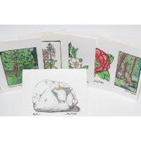 Picture of Note Cards